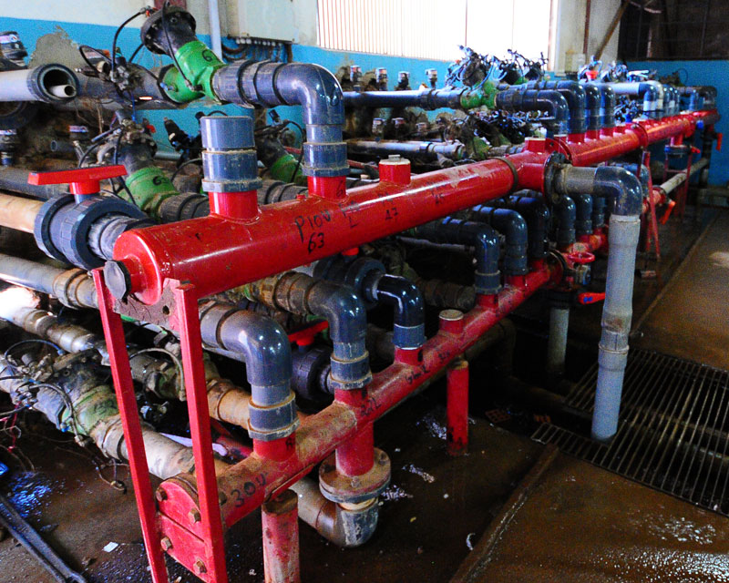 Rosebud Water Pumps